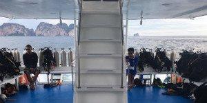 Freedom Dolphin Phuket Day Trip 5