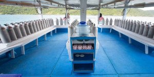 Immersioni sub giornaliere Phuket Shark Point