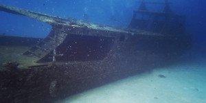 Scuba Diving Day Trip 6