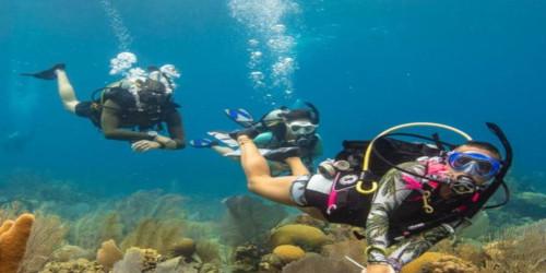 Luna Diving Thailand Open Water PADI Phuket